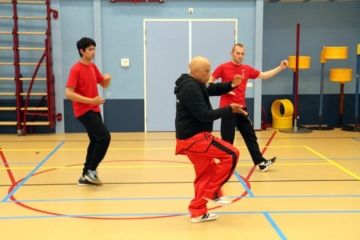 Wushu training juni 2013